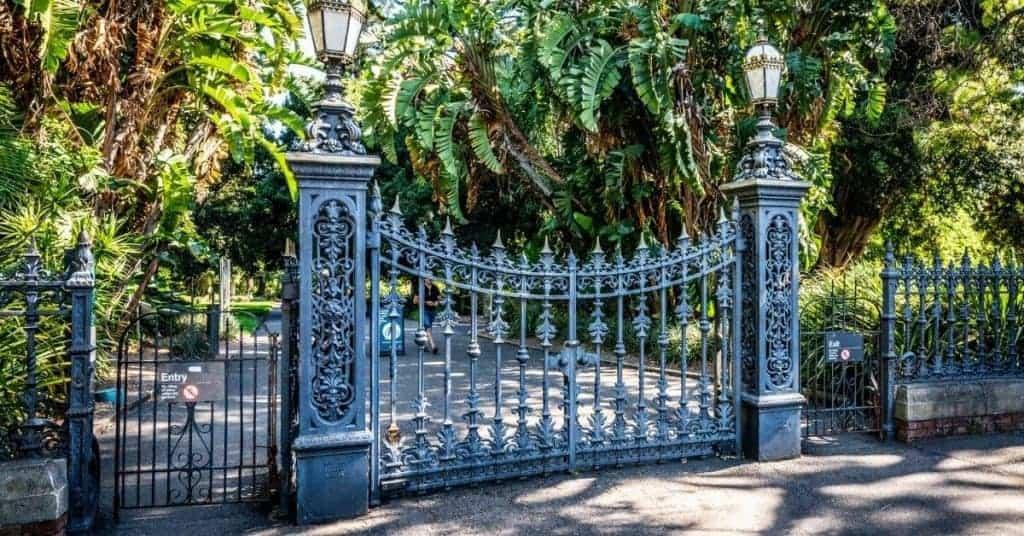 Things to do in Adelaide - Adelaide Botanic Gardens - South Australia Road Trips