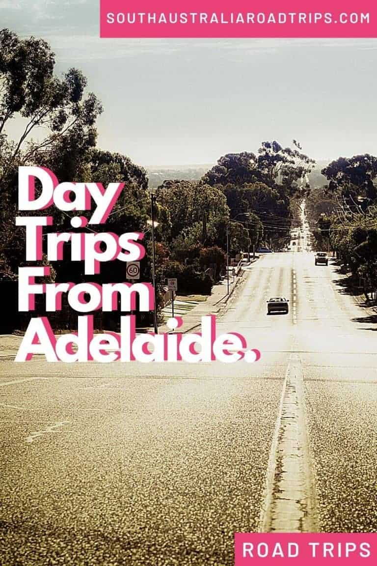 Day Trips From Adelaide - South Australia Road Trips