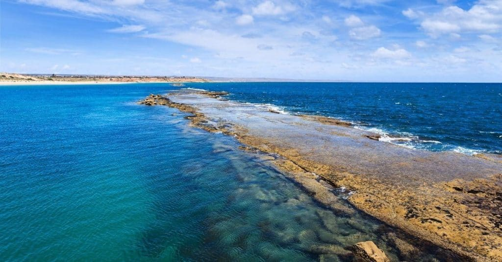 Port Noarlunga Reef - Things To Do In Adelaide - South Australia Road Trips