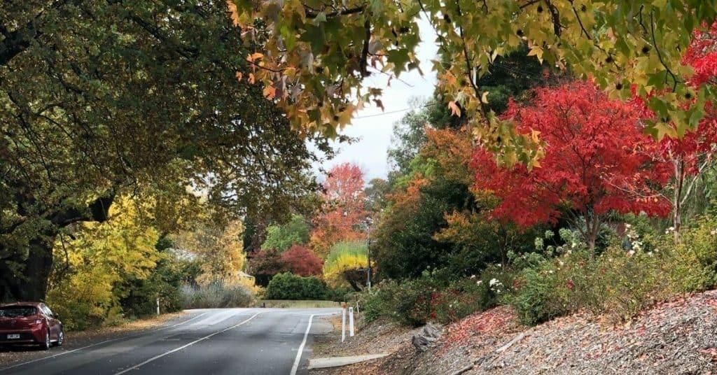 Bridgewater - Things To Do - Adelaide Hills - South Australia Road Trips